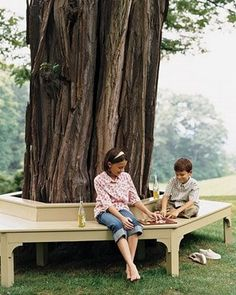 Tree Bench I Have Been Wanting Hubby To Do This Around Our