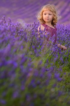 Photography - lovely perspective for portraits - crouch down low in a field to capture the lavender at the front - focus on your image that is far away and off-centre.