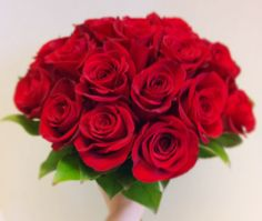 Red roses and salal.