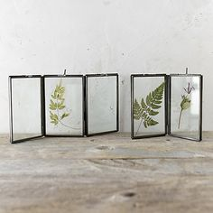 Folding Botanical Frame in House + Home Vases + Accents at Terrain