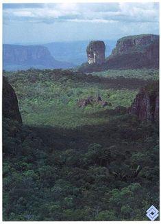 El mayor parque natural de Colombia es el «Parque Nacional Natural Serranía de Chiribiquete», situado en los departamentos de Caquetá y Guaviare, con una extensión de 1.280.000 ha, un área de bosques, sabanas inundables y cerros. La Sierra de Chiribiquete ó Serranía de Chiribiquete, es una meseta rocosa en la región amazónica colombiana originada a partir del Escudo Guayanés, Colombia Latin America, South America, Cool Places To Visit, Places To Go, Adventure Novels, Built Environment, Monument Valley, The Good Place, Beautiful Places