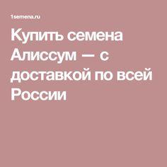 Купить семена Алиссум — с доставкой по всей России