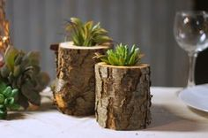 Set of Two rustic log Succulent Planters ***Plants NOT included*** Can be used with air plants as well. Looking to add some texture to your space? Whether you live in the county or your home is in the