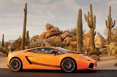 Desert Ride! The Lamborghini Gallardo