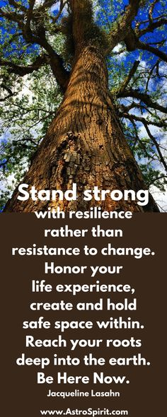 Stand strong, with resilience rather than resistance to change. Honor your life experience, create and hold safe space within. Shed the layers of habits and memories that not longer serve you. Be empowered to life life fully. by Jacqueline Lasahn Read More... #tree #wisdom #strong #resiliance #meditation