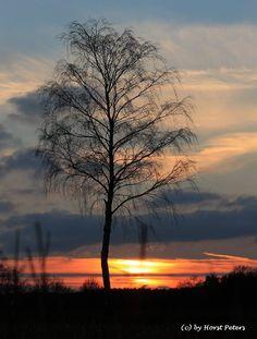 Sunset 31 by bluesgrass