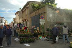 Jour de Marché du Jeudi St-Laurent de la Salanque (bedmar1958)