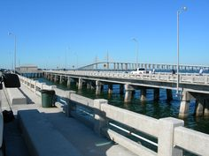 1000 images about places to walk in sarasota manatee for Sarasota fishing pier