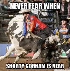 Never Fear When Shorty Gorman is here! Cowboy Horse, Cowboy And Cowgirl, Horse Riding, Cowboy Quotes, Rodeo Quotes, Cowboy Humor, Bull Riding Quotes, Rodeo Rider, Bucking Bulls