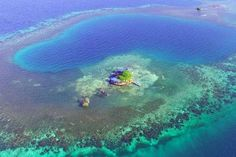 Check out this awesome listing on Airbnb: Bird Island - Placencia, Belize - Islands for Rent in Stann Creek Dist: bird island, belize private island, private island belize The Places Youll Go, Places To See, Belize Islands, Great Blue Hole, Airbnb Rentals, Vacation Rentals, Vacation Ideas, Vacation Destinations, Mauritius