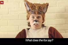 What does the fox say?? Ylvis Q: What 'The Fox' (Viral Stars) Say About Their Surprise Hit | Billboard