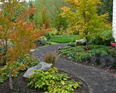 AFTER: New Curving Gravel Path - traditional - landscape - portland - Visionscapes NW Landscape Design Low Water Landscaping, Side Yard Landscaping, Low Maintenance Landscaping, Landscaping Ideas, Path Design, Landscape Design, Garden Design, Design Ideas, Design Design