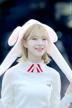 South Korean Girls, Korean Girl Groups, Pretty Girls, Cute Girls, Glass Shoes, Extended Play, Cute Korean, Little Sisters, K Idols
