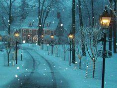 Snowy lamp posts line a long driveway.