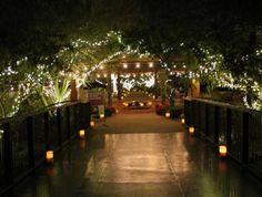 Christmas in the Desert: Holiday Luminarias at Desert Botanical Garden: Luminarias Light the Path During the Holidays