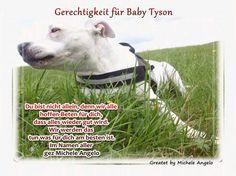 Gerechtigkeit für Baby Tyson -Wir geben die Hoffnung nicht auf !