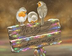 """""""Do they know it's Christmas?"""" is a digital painting by Veronica Minozzi. This work was created using the IPad and the app Procreate. Christmas Desktop, Christmas Pictures, Christmas Art, Christmas Wishes, Rustic Christmas, Sunset Wallpaper, Bird Wallpaper, Christmas Paintings, Flower Images"""