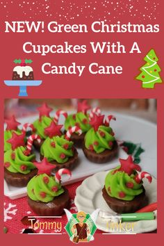 ChristmasSale Hand Crocheted Cupcake Christmas Present Gift Tote Overnight Bag Book Bag Purse Halloween Treat Bag Stocking Stuffer Birthday