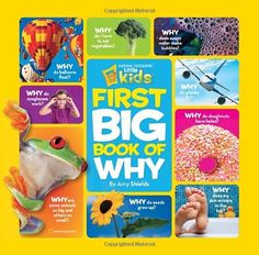 Best Gifts for a 4 Year Old Boy. the first big book of why