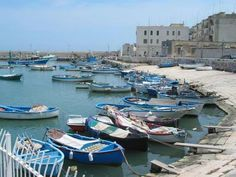 Bisceglie, Bari Italy - The Harbour