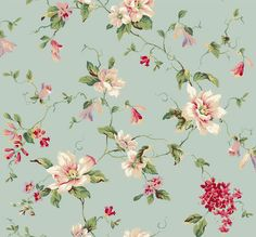 Ashford House Blooms Magnolia Wallpaper by York Wallpaper Stores, Chic Wallpaper, Wallpaper Backgrounds, Wallpapers, Floral Backgrounds, Luxury Wallpaper, Ashford House, Magnolia Wallpaper, Bloom Book