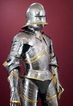 15th Century Gothic Armour ftw