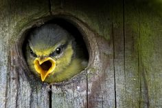 wow...look out here by David Hobcote on 500px