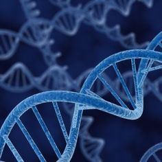 Vitamin D Deficiency Affects Genes for Cancer, Autoimmune Disorders