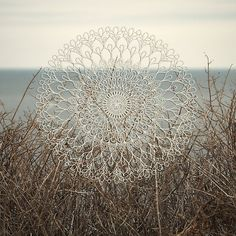 'Sunbleached Mandala' by surfculture Canvas Prints, Art Prints, Surfing, Mandala, Tapestry, Culture, Throw Pillows, Flowers, Poster