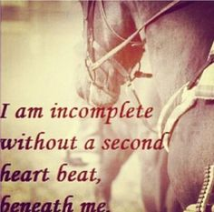 """I am incomplete without a second heart beat beneath me."" #equestrian #horses #quotes #horsequotes"