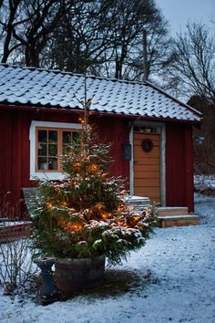 Here begins the Christmas season at the first advent. Then put the decorations up in the Red cottage on Selaön in Lake Mälaren. Christmas Is Coming, Christmas Love, Christmas Morning, Rustic Christmas, All Things Christmas, Winter Christmas, Christmas Lights, Cottage Christmas, Christmas Tables