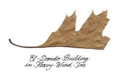 el dorado building tree