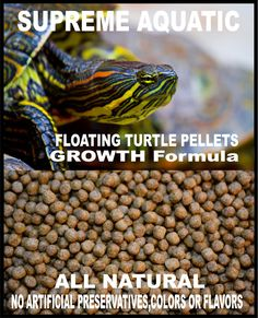SUPREME AQUATIC TURTLE GROWTH FOODALL NATURAL FloatingTurtle FoodTurtles
