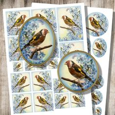 Your place to buy and sell all things handmade Bird Jewelry, Unique Jewelry, Spring Birds, Goldfinch, Bird Illustration, Collage Sheet, Digital Collage, Decoupage, Forget