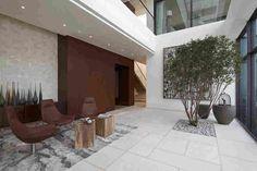 Пентхаус House of the Tree в Китае