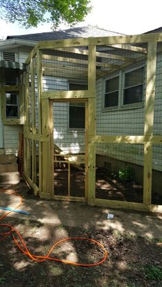 Catio completion