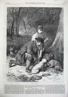 1869 Illustrated London News Man + Young Boy + Truffle Hunting Tree Dogs Fine Art