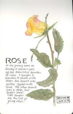 [yellow+rose.jpg] http://clairessketchbook.blogspot.com/2009_07_01_archive.html