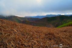 #paisaje #naturaleza #colombia