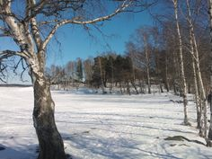 Kivinokka in wintertime