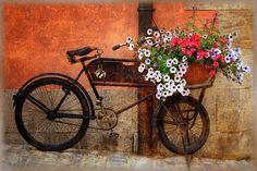 şŧγℓε | Flickr : partage de photos !
