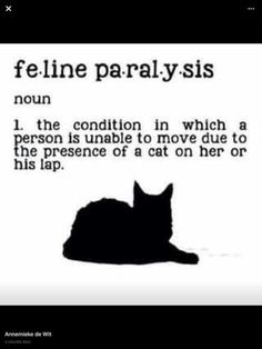 Feline paralysis. Noun. The condition in which a person is unable to move due to the presence of a cat on her or his lap.