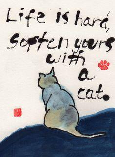 Life is Hard (by Hawaii Cat Artist)