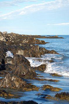 Maine Coast, via Flickr
