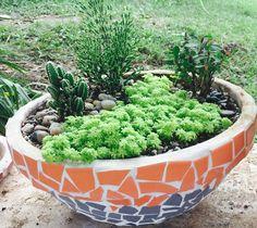 Decoracion Mosaico con cactus. Plants