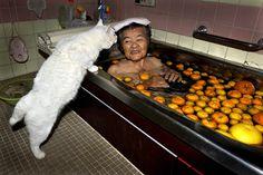 Misa and her cat Fukumaru
