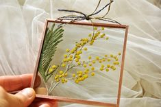 In frame. Nature gift from Italy. Hanging Plant Wall, Copper Frame, Pressed Flower Art, Presents For Her, Real Plants, Flower Frame, Yellow Flowers, Dried Flowers, Flower Decorations