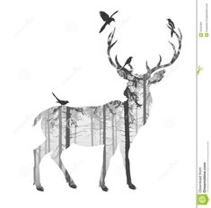 Image result for deer in woods drawings