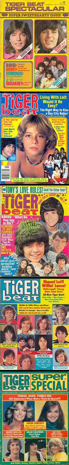 1970s Tiger Beat Magazines