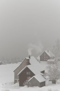 I dream of snow covering like this. Villages all shrouded in white, muffled & glowing with woodsmoke billowing softly from chimneys. More snow please!